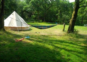 dodgson wood campsite