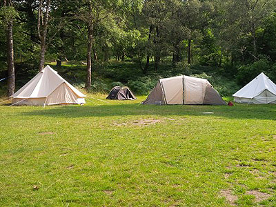 dodgson wood campsite near coniston