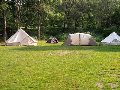 dodgson wood campsite near coniston